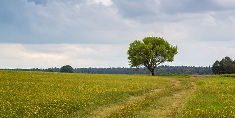 South Bohemia - The Pearl of irregular shape - Through the Baroque Landscape of South Bohemia by Bike